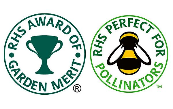 RHS Award of Garden Merits